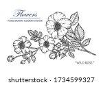 sketch floral botany collection.... | Shutterstock .eps vector #1734599327