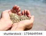 Sea Sand In The Hands Of Man....