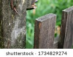 Old Wooden Fence With Pins  ...
