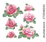 watercolor illustrations of... | Shutterstock . vector #173548241