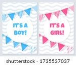 its a boy or girl. baby shower...   Shutterstock .eps vector #1735537037