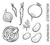 onion  carrots  beetroot ... | Shutterstock .eps vector #1735740734
