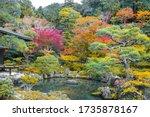 Japanese Autumn Garden In The...