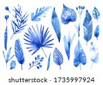 set of watercolor tropical... | Shutterstock . vector #1735997924