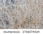 Natural Texture Of Straw. Craft ...