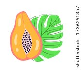abstract fruit icon papaya on... | Shutterstock .eps vector #1736291357