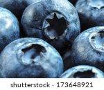 blueberry blueberries... | Shutterstock . vector #173648921