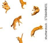Pattern of many ginger flying...
