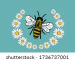 Sweet Bee Honey Daisy With...