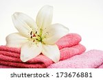 pink towel and white lily... | Shutterstock . vector #173676881