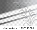 the transparent shadow overlay... | Shutterstock .eps vector #1736945681