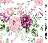 pink  burgundy rose  peony...   Shutterstock .eps vector #1737153731
