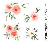 rose flower bouquet set with... | Shutterstock . vector #1737232274