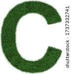 grass letter c isolated on... | Shutterstock .eps vector #1737332741