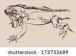 painted lizard  chameleon ...   Shutterstock . vector #173733689