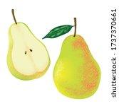 juicy pears vector illustration....   Shutterstock .eps vector #1737370661