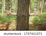 Funny Nature Image Of A Tree In ...