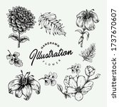 vector illustration of floral... | Shutterstock .eps vector #1737670607