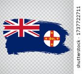 flag of  new south wales brush...