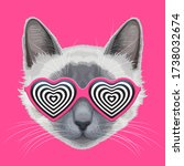 drawn cat face with trendy...   Shutterstock .eps vector #1738032674