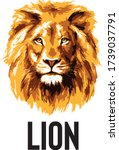 Lion Head Art Vector...