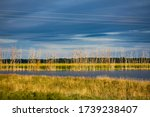 Small photo of Landscape photo of Shiawassee National Wildlife Refuge that includes lakes, ponds, rivers, forests, marshland