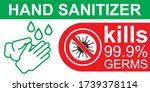 hand sanitizer. sanitizer icon. ... | Shutterstock .eps vector #1739378114