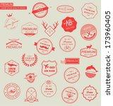 collection of premium design... | Shutterstock .eps vector #173960405