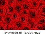 Stock photo background of beautiful red roses 173997821