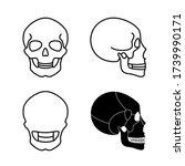 human skull anatomy. flat...   Shutterstock .eps vector #1739990171