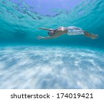 young man diving on a breath... | Shutterstock . vector #174019421