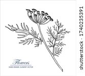 sketch floral botany collection.... | Shutterstock .eps vector #1740235391