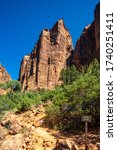 Southwest usa zion national...