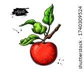 apple vector drawing. hand...   Shutterstock .eps vector #1740309524