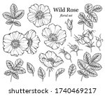 Wild Rose Flower Set  Line Art...