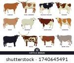 Set Of Twelve Popular Cattle...