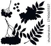 berries  black silhouette ...   Shutterstock .eps vector #1740665537
