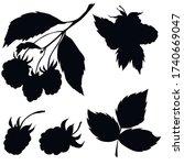 berries  black silhouette ...   Shutterstock .eps vector #1740669047