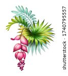 Digital Botanical Illustration  ...