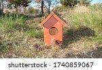 Bird House Bird House ...