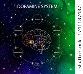 Dopamine Pathways In The Brain...