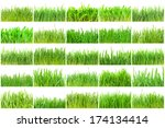 fresh green grass isolated on... | Shutterstock . vector #174134414
