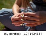Young Woman Making A Daisy...