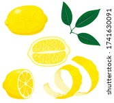 lemons. set of whole  cut in... | Shutterstock .eps vector #1741630091