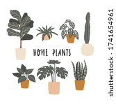 different potted plants... | Shutterstock .eps vector #1741654961