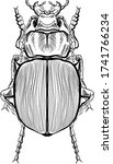 macro detailed sketched drawn...   Shutterstock .eps vector #1741766234