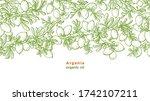 argan tree. vector sketch of... | Shutterstock .eps vector #1742107211