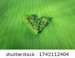 Aerial View Of Heart Shaped...
