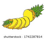 vector hand drawn pineapple.... | Shutterstock .eps vector #1742287814