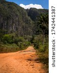 Red Earth Dirt Road In The...